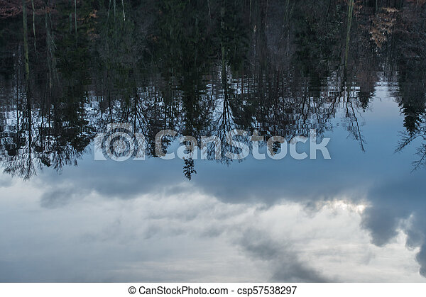 Trees and clouds reflections - csp57538297