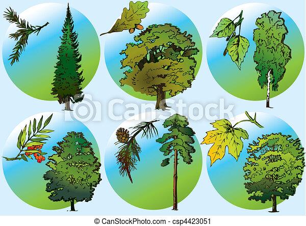 Trees and foliage. - csp4423051