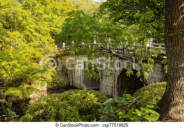 Trees and plants by arch bridge at Japanese garden - csp77518829