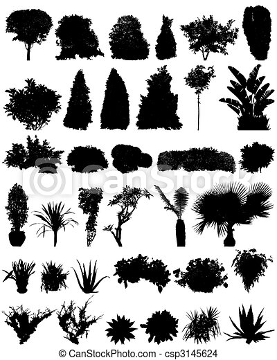 trees and shrubs silhouettes - csp3145624