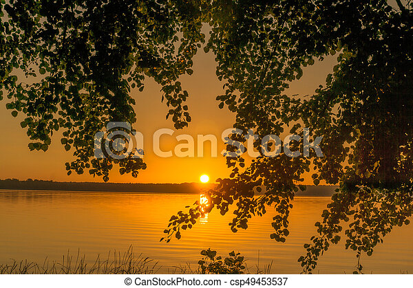 Trees at sunrise on a small lake - csp49453537