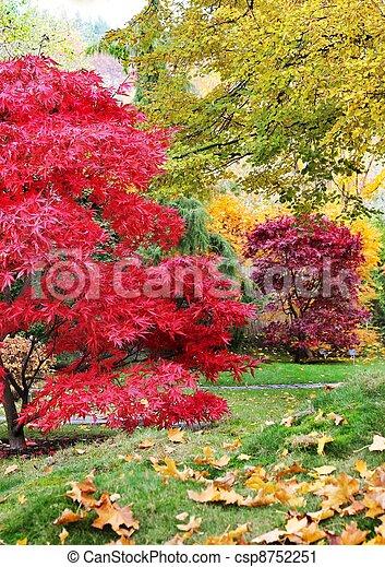 Trees in a japanese garden - csp8752251