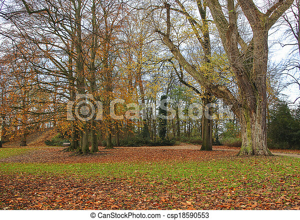 Trees in fall colors - csp18590553