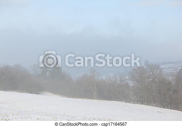 Trees in fog - csp17164567