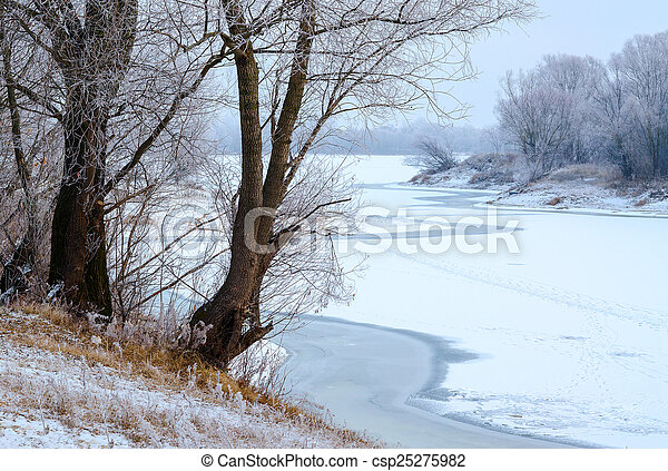 Trees in hoarfrost on the river bank - csp25275982