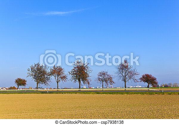 trees in landscape under blue sky - csp7938138