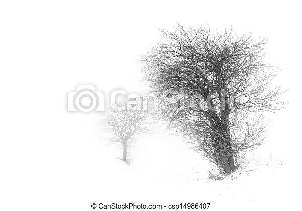 Trees in snow barren winter landscape - csp14986407