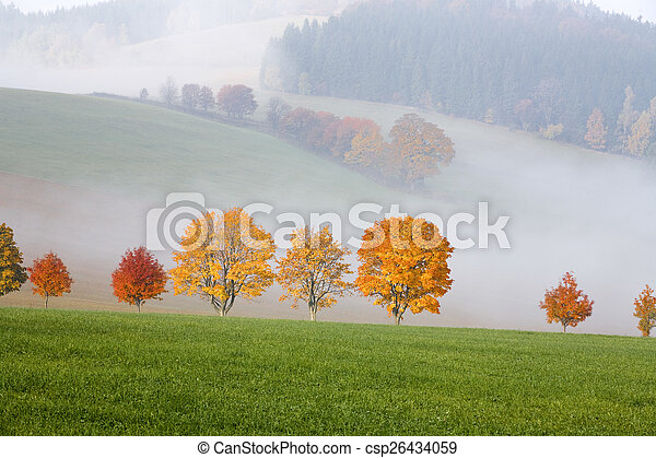 trees in the hills landscape scenery - csp26434059