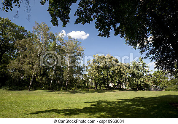 Trees in the park - csp10963084