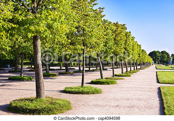 Trees in the park - csp4094598