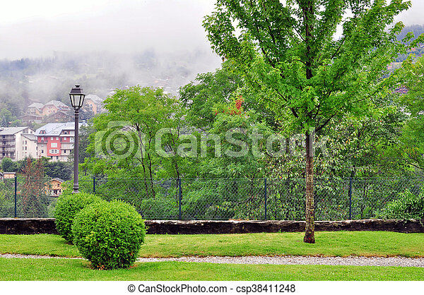 Trees in the park - csp38411248