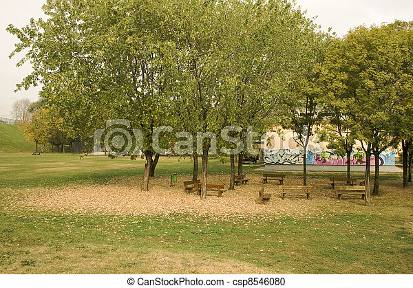 Trees in the park - csp8546080