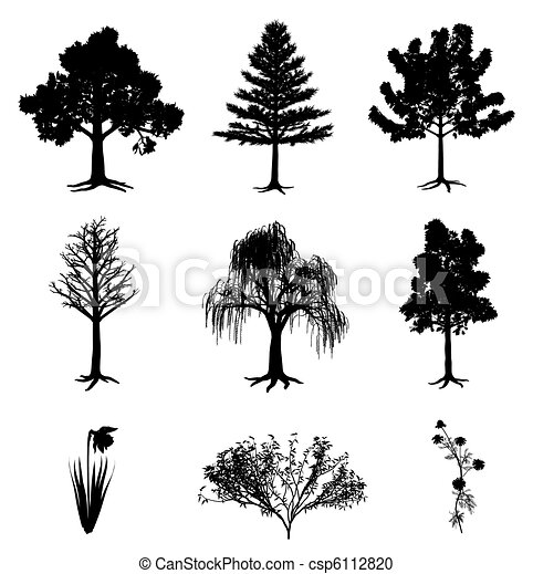 Trees narcissus chamomile and bush - csp6112820