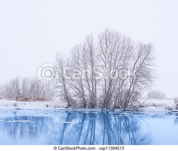 trees on the bank of the river in snowfall - csp11394513