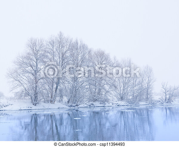 trees on the bank of the river in snowfall - csp11394493
