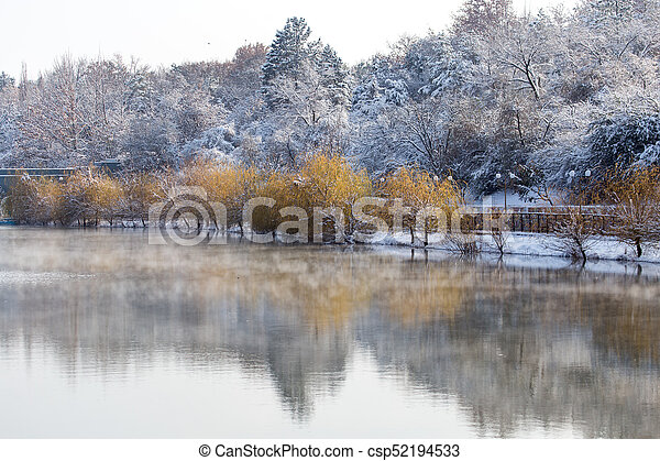 trees on the lake in winter - csp52194533