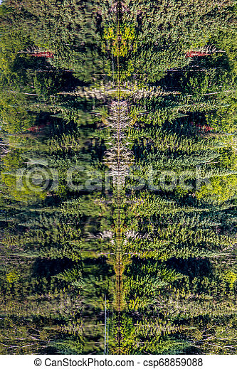 Trees Reflected in Water - csp68859088
