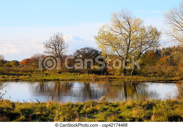 Trees reflecting in the lake - csp42174468