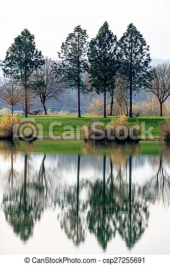 trees reflecting in the lake - csp27255691