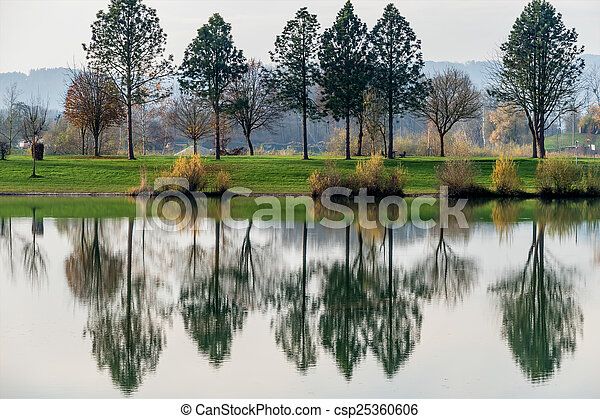trees reflecting in the lake - csp25360606