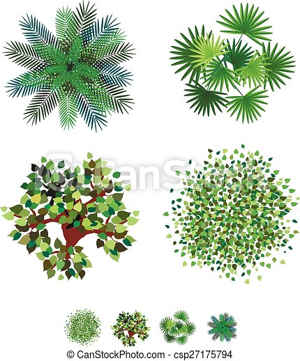 Trees Top View For Landscape Vector Illustration On White Background