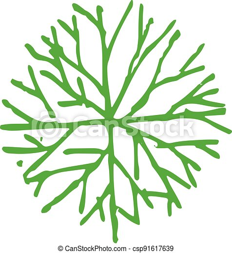 trees with leaves icon sign design - csp91617639
