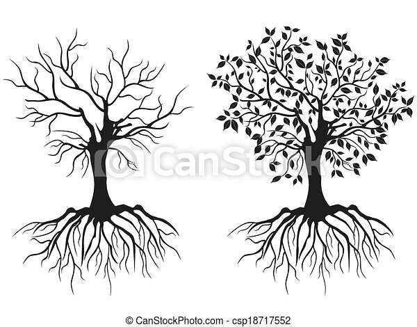 trees with roots - csp18717552