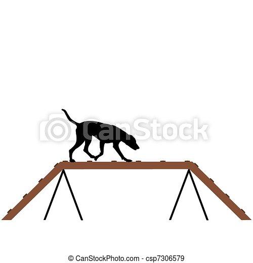 treinamento, cão - csp7306579