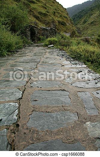 Trek to Bhagsu Waterfall, India - csp1666088
