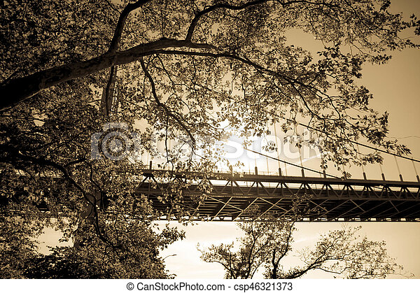 Triborough bridge behind the tree in vintage sepia style, New York - csp46321373
