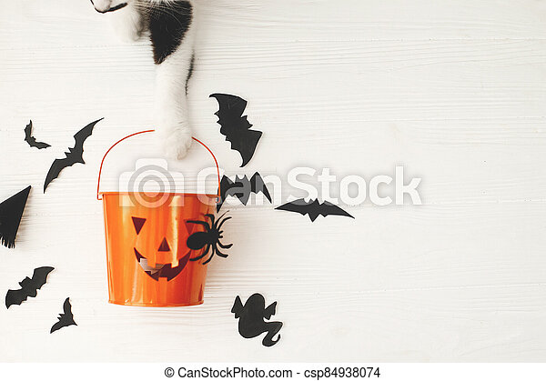 Trick or treat! Cat paw holding Jack o lantern candy pail on white background with bats and spider decorations, celebrating halloween at home. Top view with space for text. - csp84938074