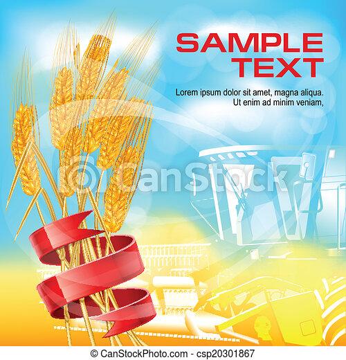 Orejas de trigo con cinta - csp20301867