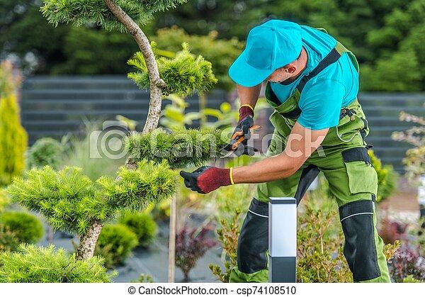 Trimming Backyard Garden Plants - csp74108510