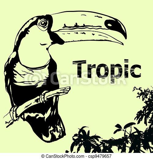 tropic-2 - csp9479657