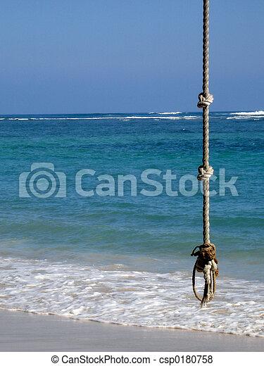 Tropic Rope Swing - csp0180758