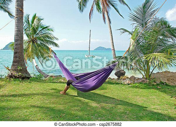 tropicais, férias - csp2675882
