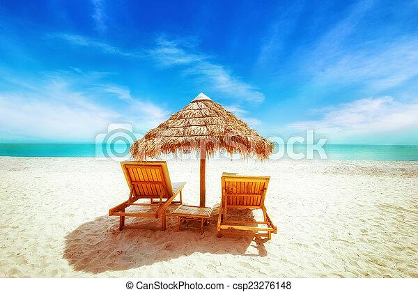 tropicais, guarda-chuva, cadeiras, sapé, relaxamento, praia - csp23276148