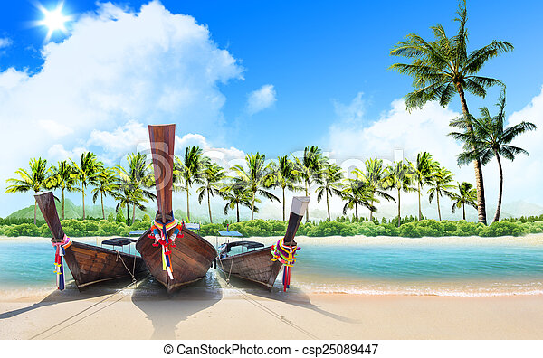 tropical beach and palm trees - csp25089447