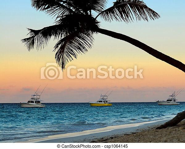 Tropical beach at sunset - csp1064145