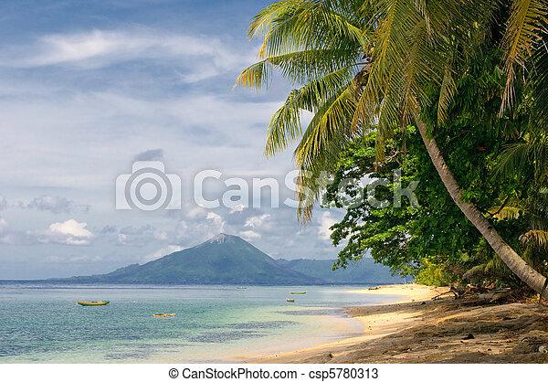 tropical beach, banda islands, indonesia - csp5780313