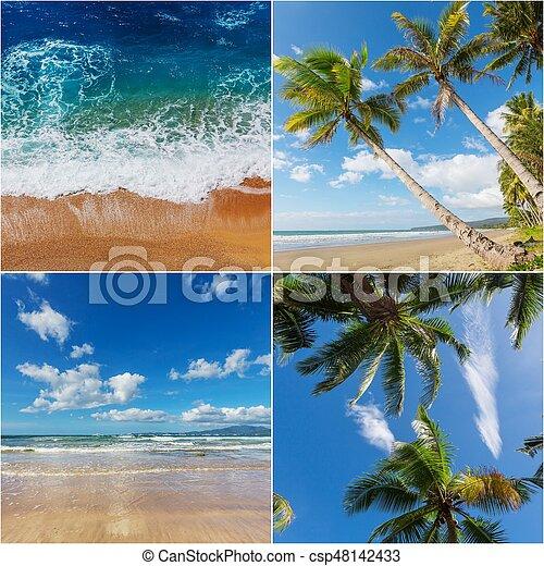 Tropical beach collage - csp48142433