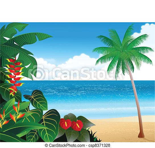 Tropical Beach Vector Illustration Of Tropical Beach