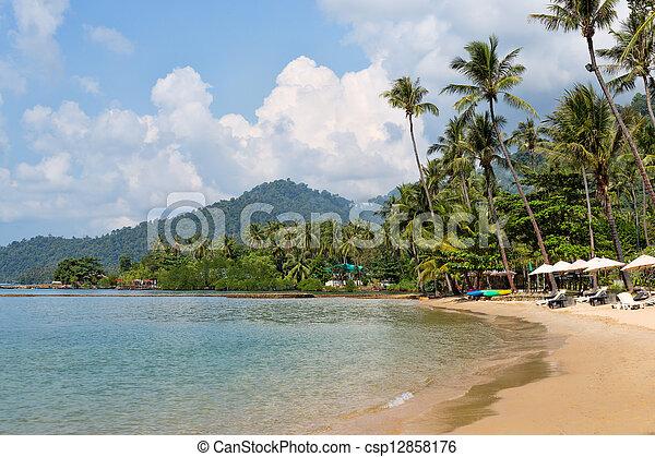 tropical beach, palm trees - csp12858176
