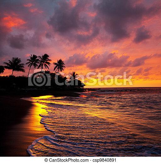 Tropical beach - csp9840891