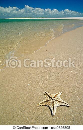 Tropical beach - csp0626808