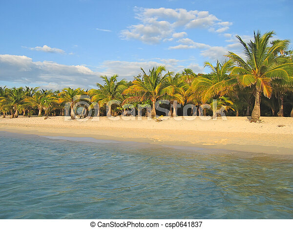 Tropical caraibe beach with palm tree and white sand, Roatan island, Honduras - csp0641837