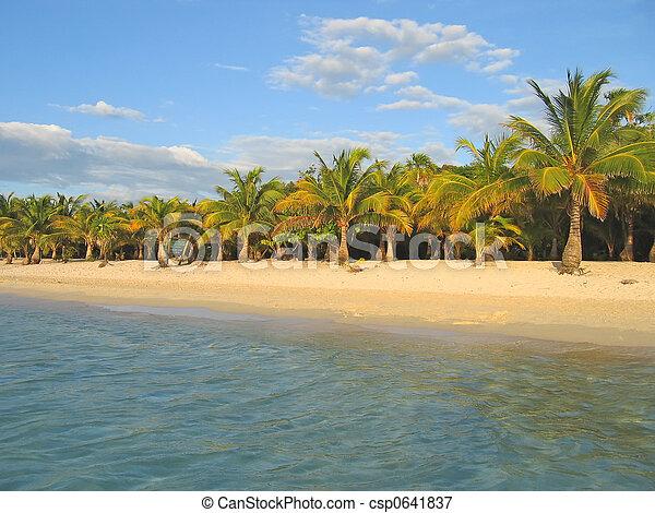 Tropical caraibe beach with palm tree and white sand, Roatan island, Honduras - csp0641837