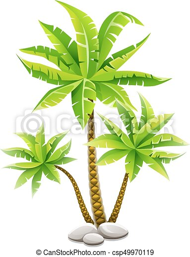 Tropical Coconut Palm Trees With Green Leaves Tropical Coconut Palm