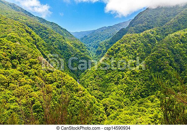 Tropical environment - csp14590934