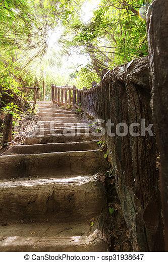 Escaleras en el bosque tropical - csp31938647